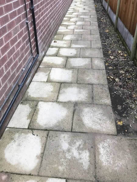 path cleaners bolton