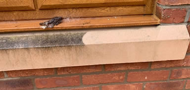 stone sill cleaning bolton